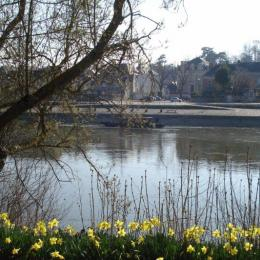 - Location de vacances - Chalonnes-sur-Loire