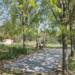 Terrain de pétanque - Chambre d'hôtes - Chemillé en Anjou