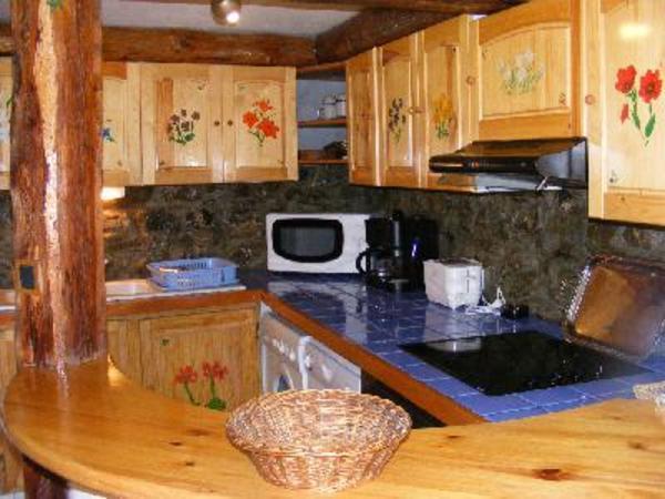 cuisine de l'appartement toute équipée ( lave linge, vaisselle raclette , fondue... - Location de vacances - Vars