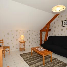 Salon agréable et lumineux - Location de vacances - Villers-sous-Châtillon