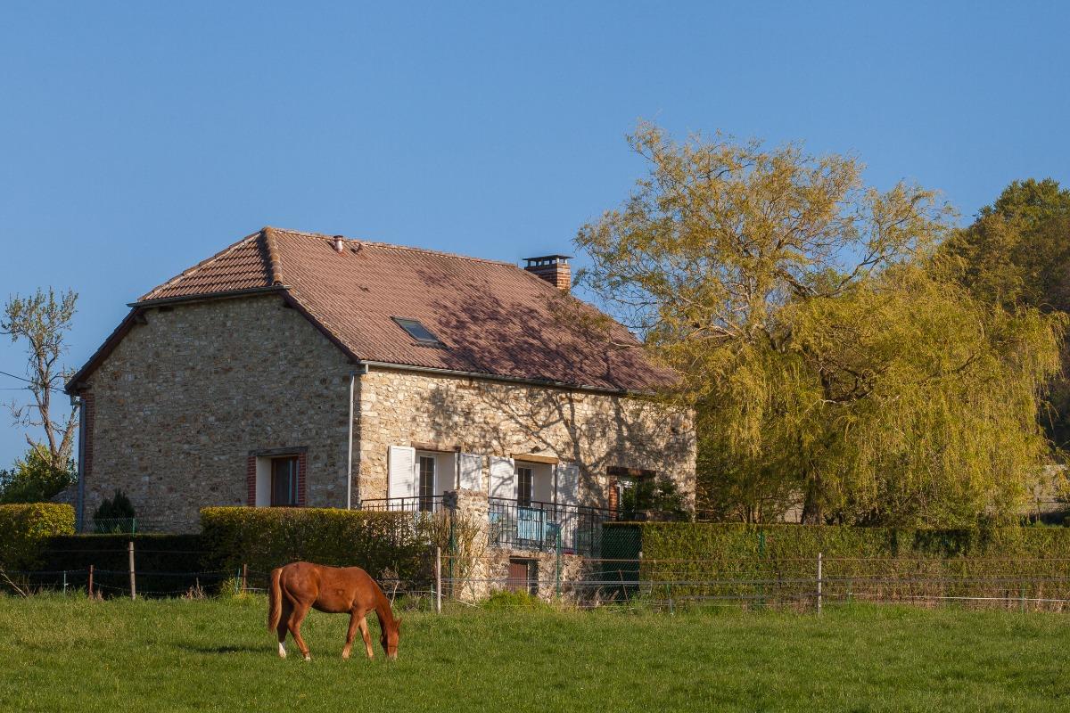Gite du château rose - Location de vacances - Nanteuil-la-Forêt