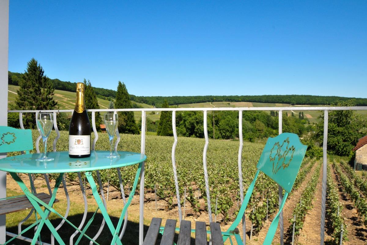Accueil en Champagne - Location de vacances - Fleury-la-Rivière