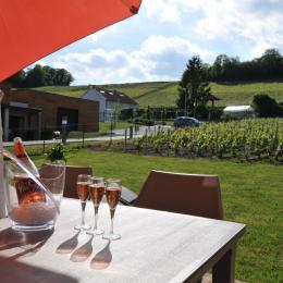 Découverte du champagne du propriétaire ! - Location de vacances - Vandeuil