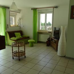 salon - Location de vacances - Arc-en-Barrois