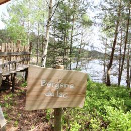 En lisière de forêt, Bergerie du Lac - Les Cabanes du Lac de Pierre Percée - Chambre d'hôtes - Badonviller