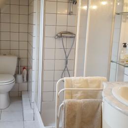 Salle d'eau avec WC - Chambre 3 personnes - Chambre d'hôte - Malestroit