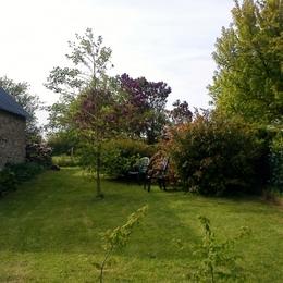 petit jardin - Location de vacances - Férel