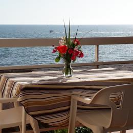 La vue de l'appartement - Location de vacances - Sarzeau