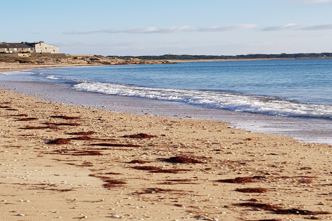 Les caraïbes Breton - Location de vacances - Saint-Gildas-de-Rhuys
