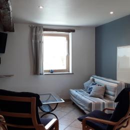 salon confortable équipé de matériel vidéo et audio - Location de vacances - Plouhinec