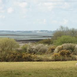 Un petite déjeuner copieux et local ! - Chambre d'hôtes - Locmariaquer