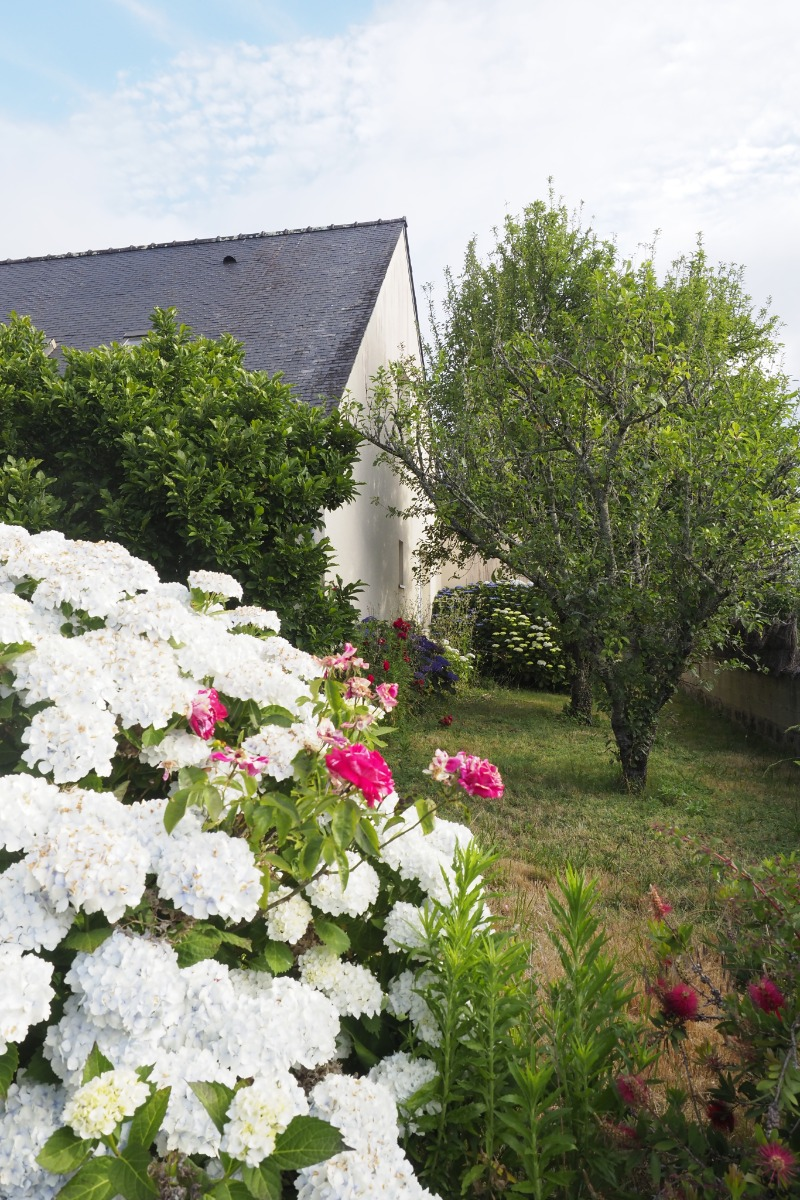 Grand jardin clos (non sécurisé) - Location de vacances - Baden