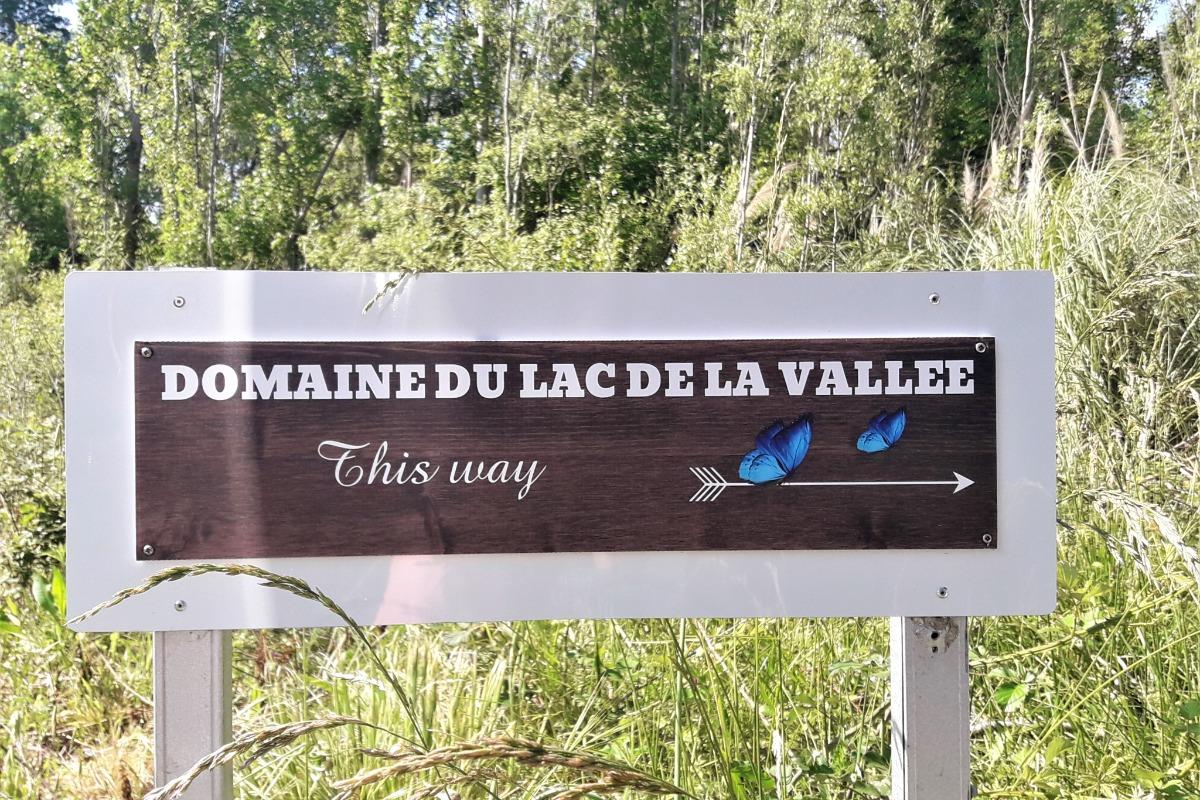 La piscine - Chambre d'hôtes - La Roquette-sur-Siagne