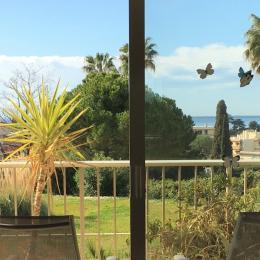 Vue sur la mer  - Location de vacances - Antibes