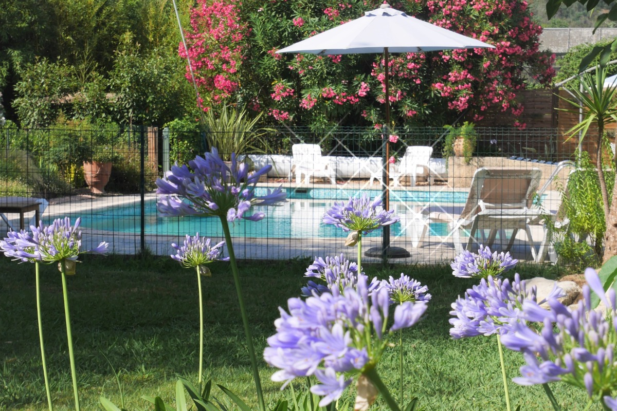Vue d'ensemble de la piscine - Location de vacances - La Roquette-sur-Siagne