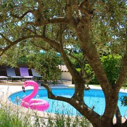 Le Mas des Cigales - Location de vacances - Valbonne