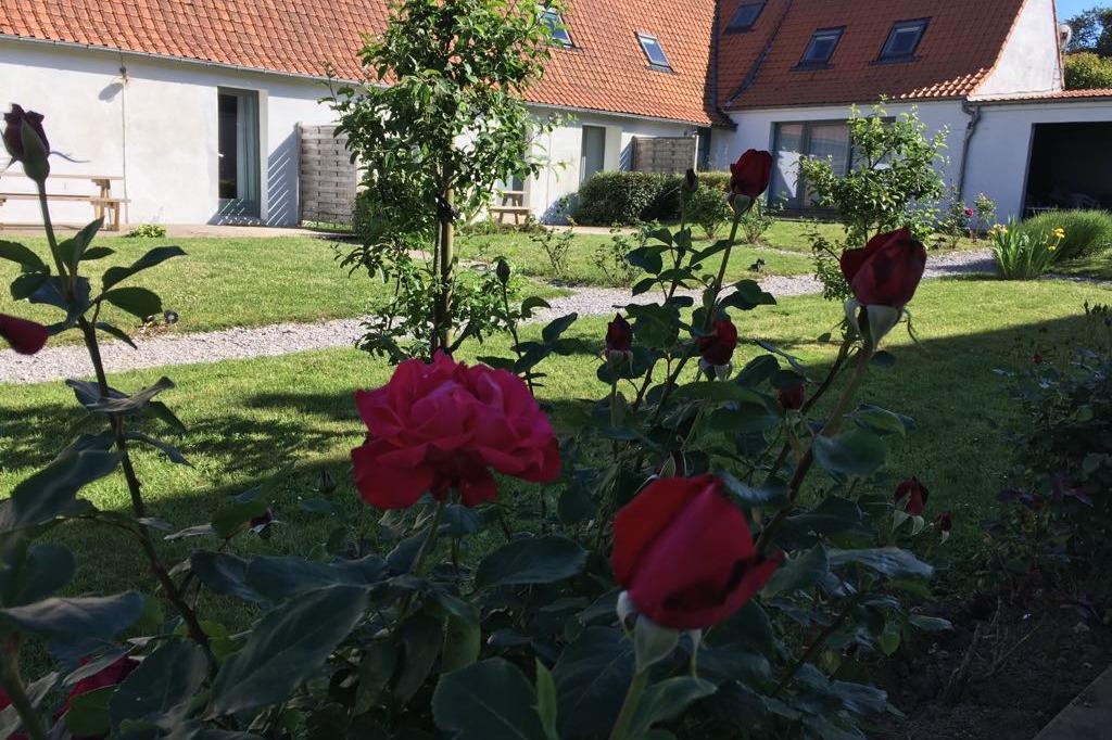 - Location de vacances - Hervelinghen