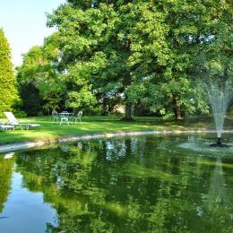 Bassin dans parc arboré - Chambre d'hôtes - Lezoux