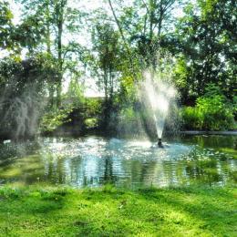 Bassin et jet d'eau - Chambre d'hôtes - Lezoux