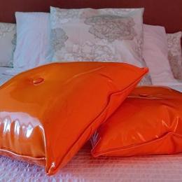 la maison Fluorine : détail - Chambre d'hôtes - Clermont-Ferrand