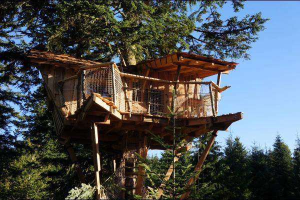 La cabane Nis de Bisou, du haut de ses 12m60 - Chambre d'hôtes - La Tour-d'Auvergne