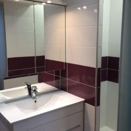 Salle de bains privative chambre 1 - Location de vacances - Volvic