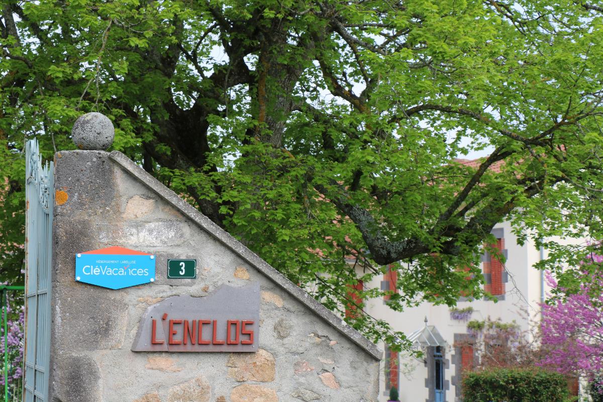 La terrasse et sa glycine. - Location de vacances - Charbonnières-les-Vieilles