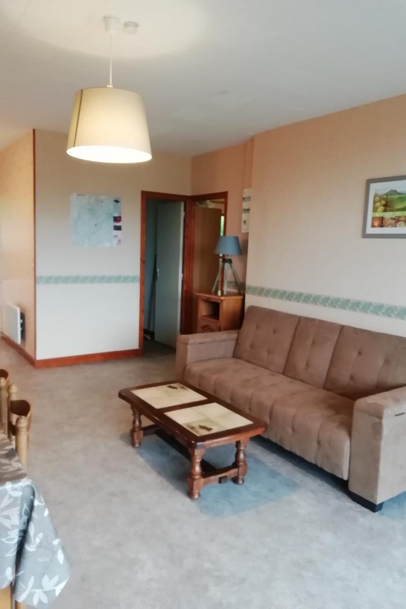 le séjour et le coin cuisine - Location de vacances - Chambon-sur-Lac