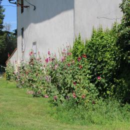 La chambre est située au 1er au dessus des roses prémières - Chambre d'hôtes - Sayat