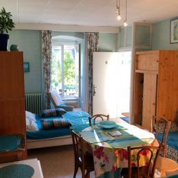 Studio de charme avec un accès direct terrasse+jardin+vue panoramique et indépendant - Location de vacances - Mont-Dore