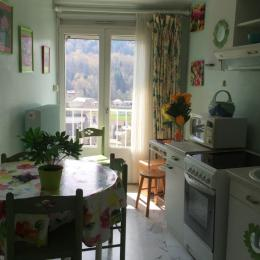 Voici l'écrin vert, appart aux belles couleurs et tableaux chatoyants  - Location de vacances - Mont-Dore