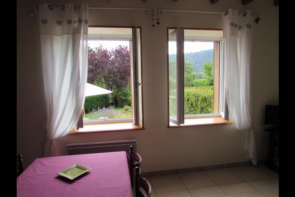 promenade au bord du lac. - Location de vacances - Chambon-sur-Lac