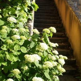 entrée du gîte - Location de vacances - Tourzel-Ronzières