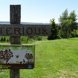 salon - Location de vacances - Chambon-sur-Lac