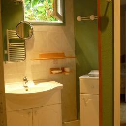 Salle d'eau Chambre 1 - Location de vacances - Ger