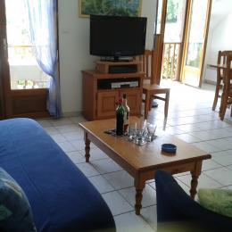 Vue depuis le canapé - Location de vacances - Génos