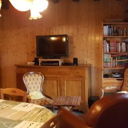 vus pièce principale - coin salon télé - Location de vacances - Vielle-Louron