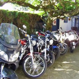 Le Clos Fleuri Lourdes - Studio Glycine - Location de vacances - Lourdes