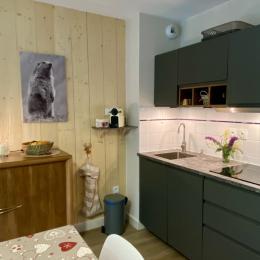 Espace cuisine équipée avec plaque induction et lave-vaisselle - Location de vacances - Cauterets