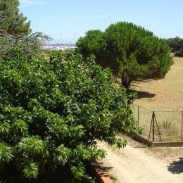 vue sur terrasse - Location de vacances - Argelès-sur-Mer