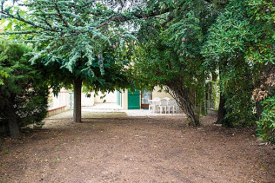 terrasse et jardin du RDC - Location de vacances - Argelès-sur-Mer
