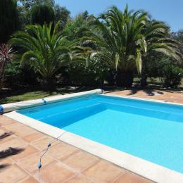 Terrasse piscine - Location de vacances - Montesquieu-des-Albères