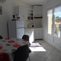 séjour /coin cuisine  - Location de vacances - Saint-Cyprien