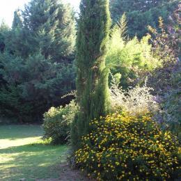 Grand jardin arboré - Location de vacances - Argelès-sur-Mer