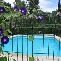 piscine - Location de vacances - Prades