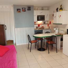 Ensemble coin salon/cuisinette - rénovés - grande télé, climatisation, nouvelle décoration, nombreux équipements - Location de vacances - Banyuls-sur-Mer