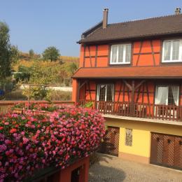 Vue exrtérieure de la maison - Location de vacances - Itterswiller