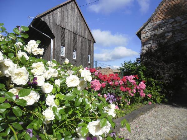 Nous sommes bien rue des roses... - Location de vacances - Stotzheim