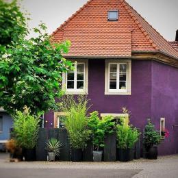 extérieur gîte la Maisonnette - Location de vacances - Gertwiller