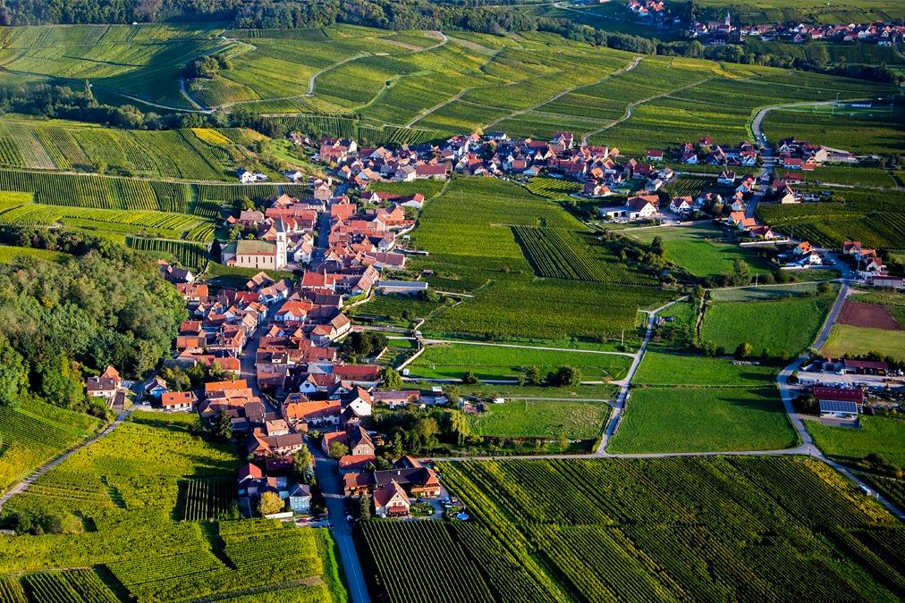 vue sur le village et le vignoble - Location de vacances - Nothalten